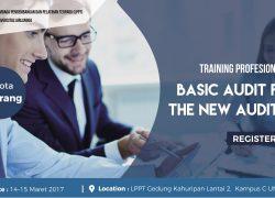 Training Profesional Basic Audit for The New Auditor